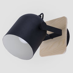 Бра TK Lighting 2629 Spectro Black